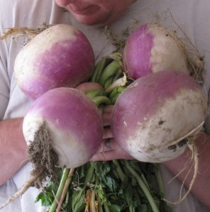 A bouquet of turnips for the farm wife.