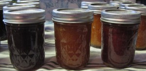 Grape jelly, peach jam, and wild plum jam.