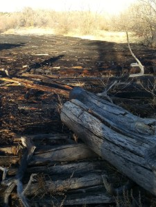 Downed logs like this have to be broken up and soaked to ensure a spark won't start another fire hours later.