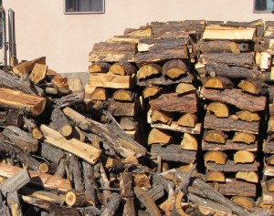 This was our half-stacked firewood pile.