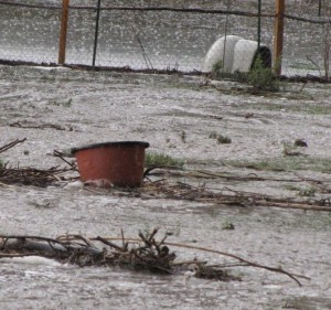 Bucket from corrals. Where does the pond start?